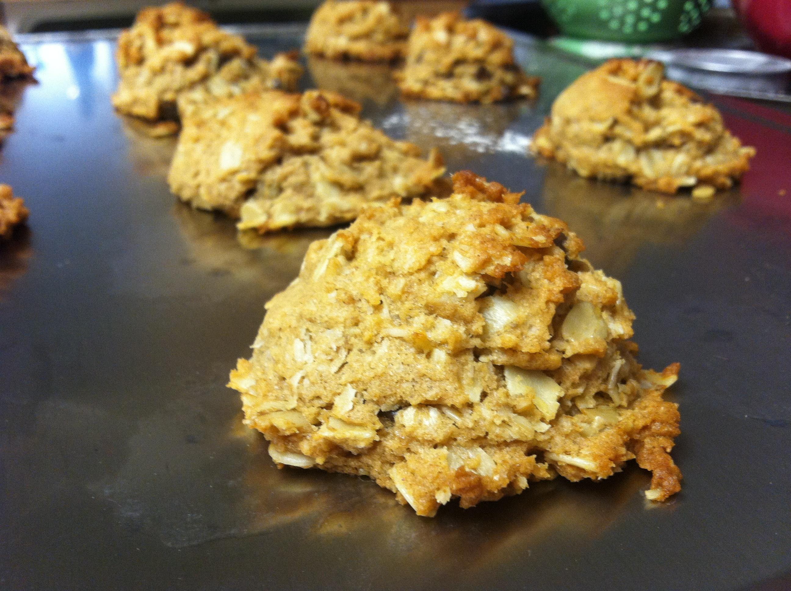 lactationcookie2