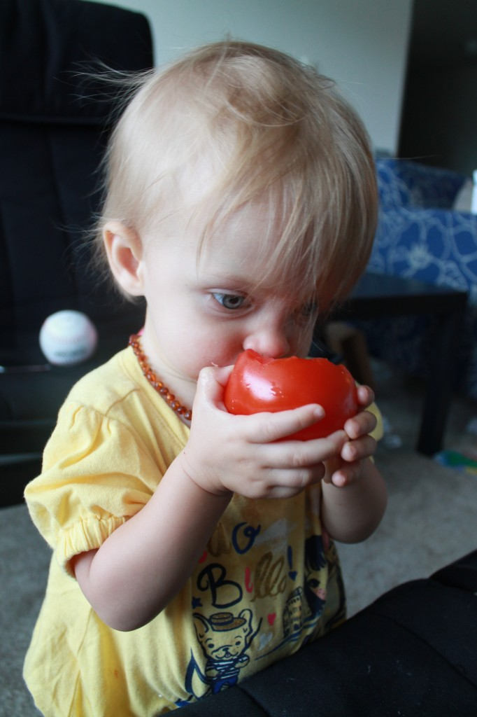 MunchkinMeals-Tomato