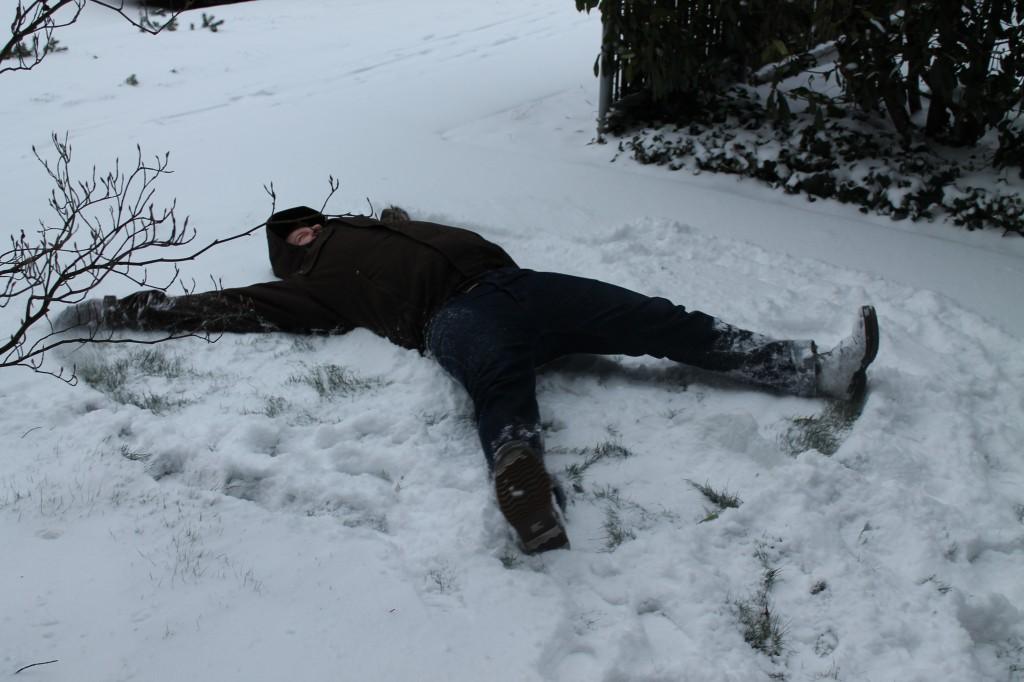 snowday neil