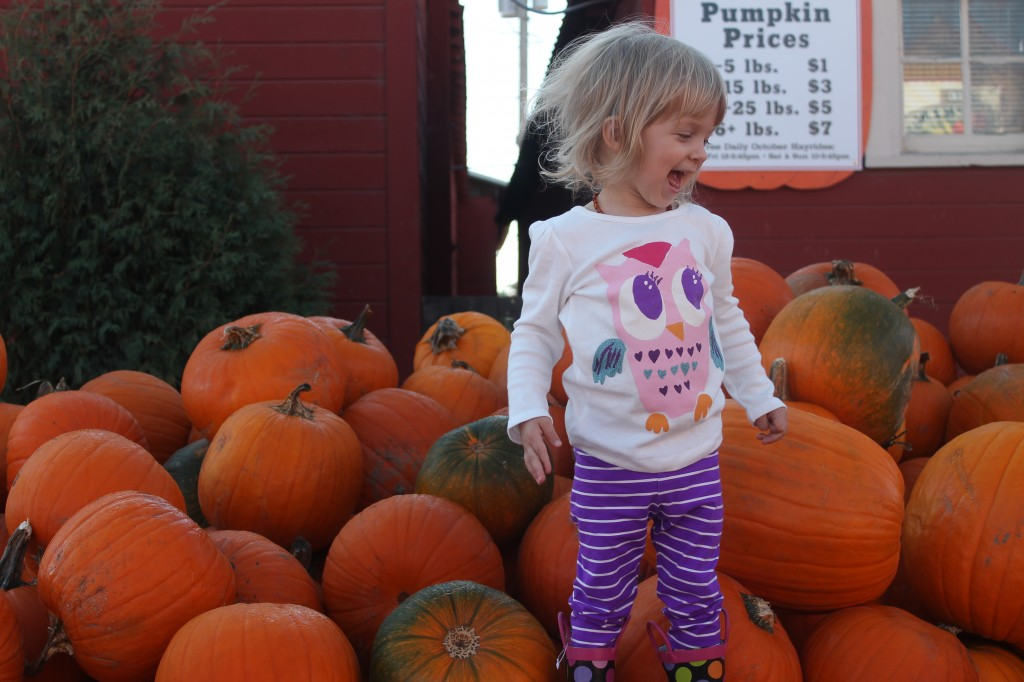 ThePumpkinPatch-Edith
