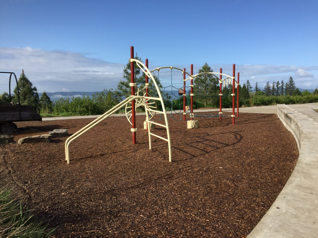 Cooper Mountain - Play Structure