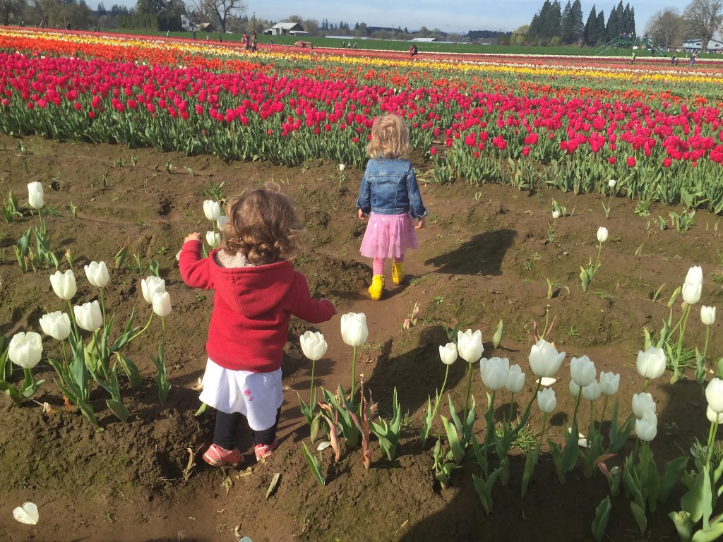 March 2015 - Tulip Fest - edith & shosh fields