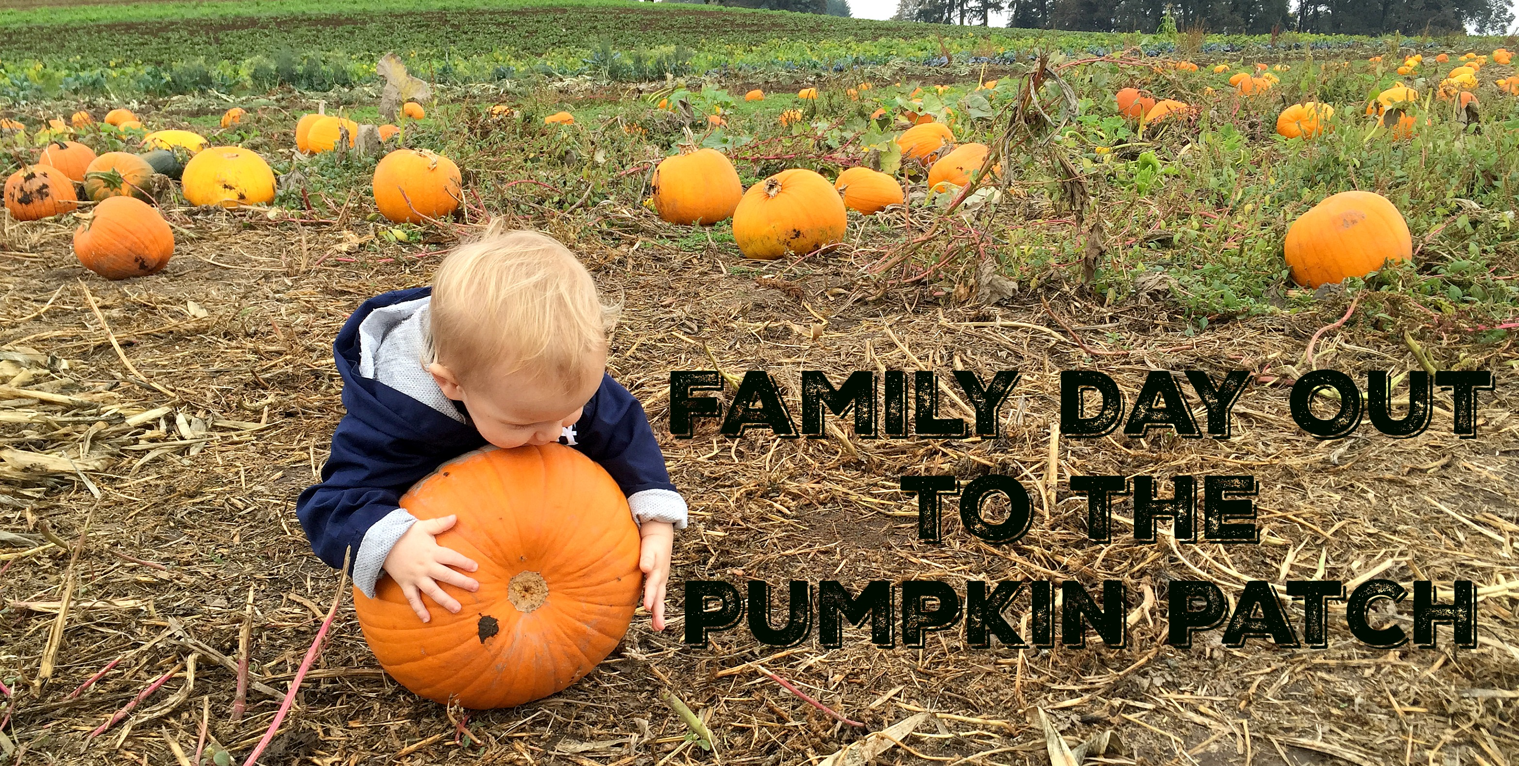 2015_10_17_PumpkinPatching-Header
