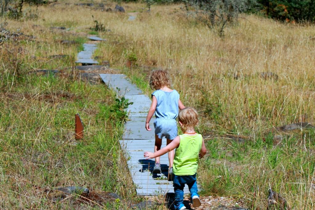 2016.07.23 - camassia nature park - 6